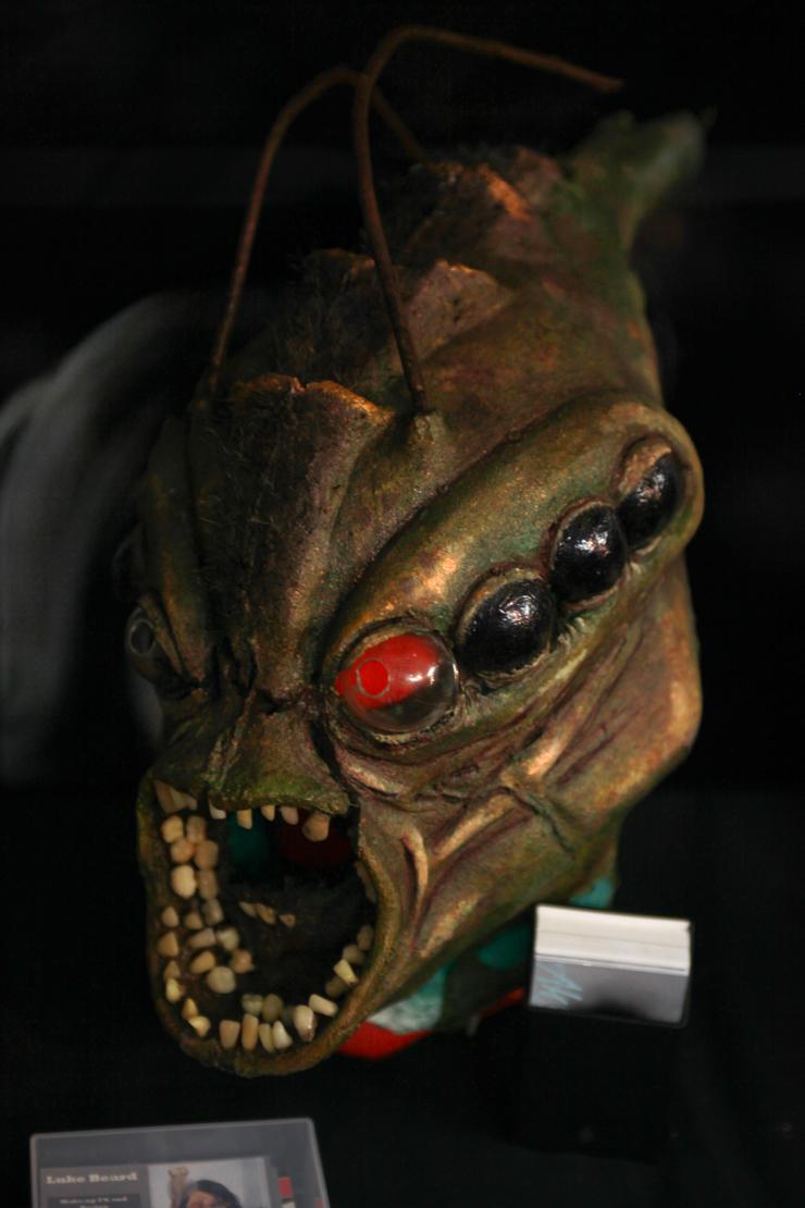 maschera da insetto